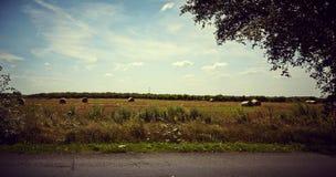 Paysage idyllique de terres cultivables Photographie stock libre de droits
