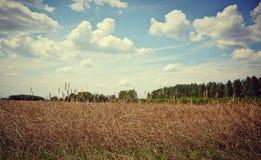 Paysage idyllique de terres cultivables Photographie stock