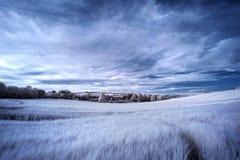 Paysage infrarouge d'été de couleur fausse surréaliste renversante au-dessus d'agri Photo libre de droits