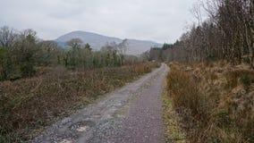 Paysage irlandais de route et de montagnes photographie stock libre de droits