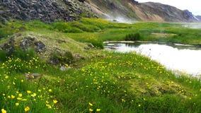 Paysage islandais de Landmanalaugar pendant le matin clips vidéos