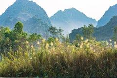 Paysage karstique dans la baie de Halong de terre Photo stock