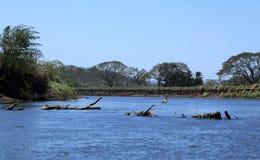 Paysage le long de la rivière de Tarcoles images libres de droits