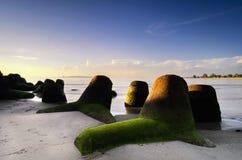 Paysage le long du bord de la mer avec la structure de brise-lames photos libres de droits