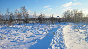 Paysage lithuanien d'hiver Photographie stock libre de droits