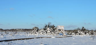 Paysage lithuanien d'hiver Photo stock