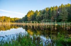 Paysage lithuanien de lac Photo libre de droits