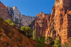 Paysage lumineux d'automne en Zion National Park image stock