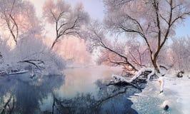 Paysage lumineux d'hiver avec la gelée partout En grande partie rivière calme d'hiver, entourée par des arbres couverts de gelée  Photo libre de droits