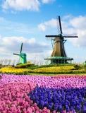 Paysage magique de ressort avec les fleurs et le moulin aérien de modèles dedans Image stock
