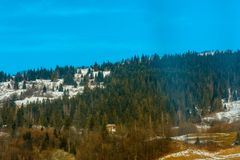 Paysage magnifique de montagne avec la forêt verte et le ciel bleu de l'Ukraine occidentale photographie stock