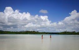 Paysage marin avec de l'eau turquoise au jour ensoleillé Photo stock