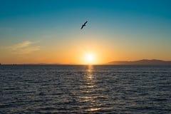 Paysage marin avec des vues de coucher du soleil au-dessus de l'océan pacifique photo libre de droits