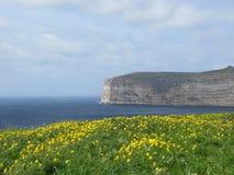 Paysage marin d'île avec des fleurs et des roches Photographie stock libre de droits
