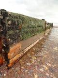 Paysage marin d'aine de plage Photo libre de droits