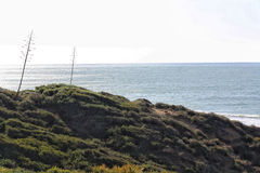 Paysage marin d'hiver Photo stock