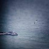 Paysage marin d'hiver avec la mouette et le phare Photographie stock