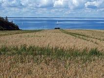 paysage marin de bateau à voiles Photographie stock