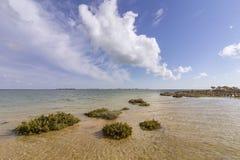 Paysage marin de plage d'Algarve Cavacos à la réservation de marécages de Ria Formosa, Algarve Images stock