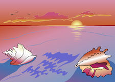 Paysage marin de Sea-shell illustration stock