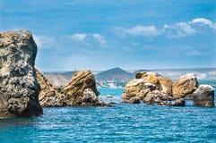 Paysage marin - des roches sont lavées par la Mer Noire, oiseaux sur les roches, Karadag Crimée Images libres de droits