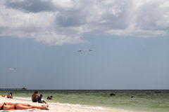 Paysage marin du sud de la Floride Photo stock