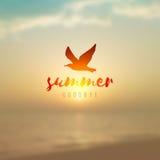 Paysage marin et mouette de lever de soleil Photo stock