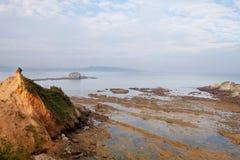 Paysage marin gentil à marée basse images stock