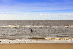 Paysage marin à la plage de Crosby à Liverpool Photo stock
