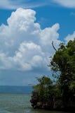 Paysage marin vertical, nuages blancs dans le ciel, peu d'arbres dans le premier plan Images stock