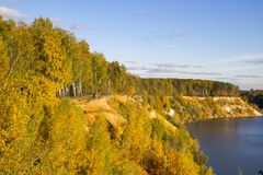 Paysage merveilleux de forêt un jour ensoleillé Scène colorée d'automne photos libres de droits