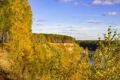 Paysage merveilleux de forêt un jour ensoleillé Scène colorée d'automne photo libre de droits