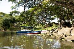 Paysage merveilleux de littoral de lac Nicaragua image stock