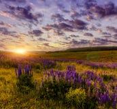 Paysage merveilleux de nature coucher du soleil majestueux avec des nuages rougeoyant dans ensoleillé Images libres de droits