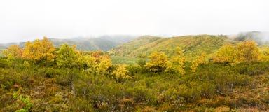Paysage montagneux avec les collines automnales dans le brouillard photo libre de droits