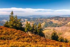Paysage montagneux d'automne photos libres de droits