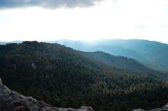 Paysage montagneux de forêt à partir du dessus image libre de droits
