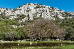 Paysage montagneux sur la péninsule de Bozburun dans la province de Mugla de la Turquie photographie stock libre de droits