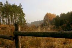 Paysage montrant un pré et une forêt Images stock