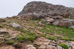 Paysage mt Evans le Colorado de montagne rocheuse Image libre de droits