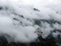 Paysage mystérieux de montagne couvert en nuages de mousson Photo stock