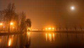 Paysage mystique avec des arbres près de l'étang en automne brumeux même Photographie stock