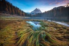 Paysage mystique avec l'herbe d'automne et le pont en bois colorés à Image libre de droits