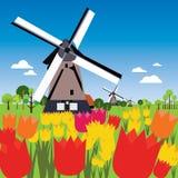 Paysage néerlandais Images libres de droits