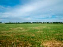 Paysage néerlandais plat avec l'herbe verte et la vue lointaine Image libre de droits