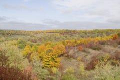 Paysage naturel d'automne, fond Photos libres de droits
