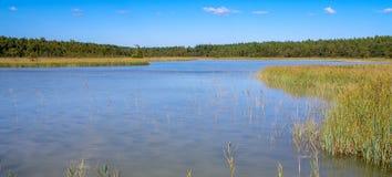 Paysage naturel d'Europe du Nord Photo libre de droits