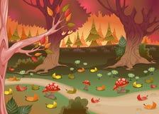 Paysage naturel dans le bois Photo libre de droits