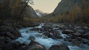 Paysage naturel des montagnes sibérien de cascade de Rocky Mountain River Running Through de l'eau blanche beau banque de vidéos
