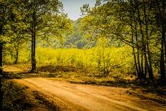 Paysage naturel du pays Turquie Photographie stock libre de droits